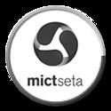 MictSeta logo